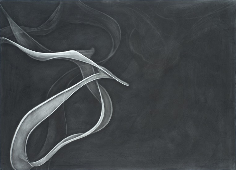 Mark Sheinkman, Laurel 2010, Oil, alkyd, and graphite on linen